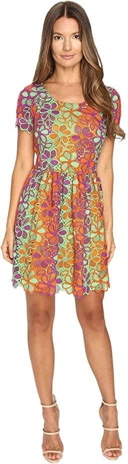 Multicolor Lace Dress