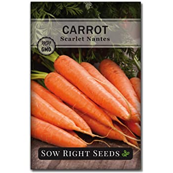 Sow Right Seeds - Scarlet Nantes Carrot Seed for Planting - Non-GMO Heirloom Packet with Instructions to Plant a Home Vegetable Garden, Indoors or Outdoor; Great Gardening Gift (1)