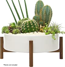 Mid Century Large Round Succulent Planter Bowl, 10 Inch White Ceramic Pot with Wood Stand, Succulent Garden Shallow Pot, Dining Table Centerpiece, Cactus and Plant Container with Drainage, Indoor
