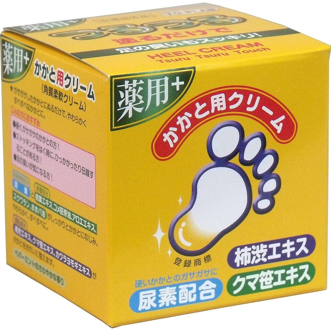 香り触覚より良いトプラン つるつる 薬用 かかと用クリーム 110g入