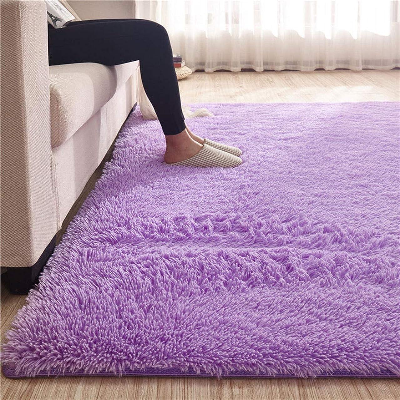 一部在庫許容カーペット 60*160cm (約0.5畳) ラグマット 洗える 「Moras」 厚い 長方形 絨毯 防音 抗菌 消臭 防ダニ 滑り止め付き 北欧 センターラグ パープル