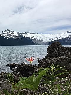 Hiking with Valentine - Garibaldi Lake Trail