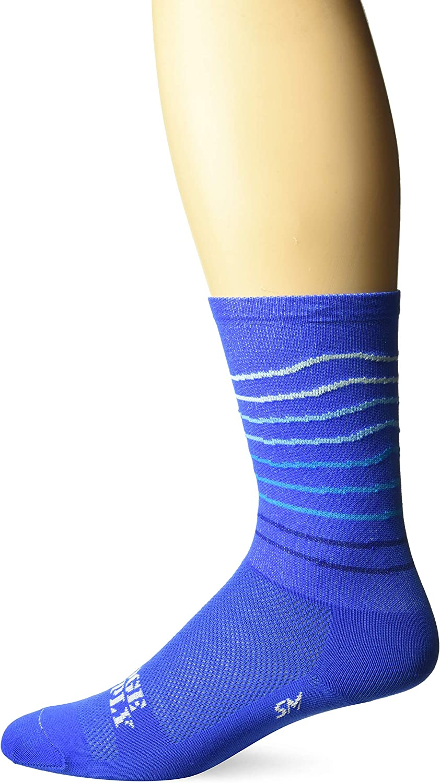 DEFEET RSRLBLUE101 Ridgeline Socks, Small, Blue/Neptune
