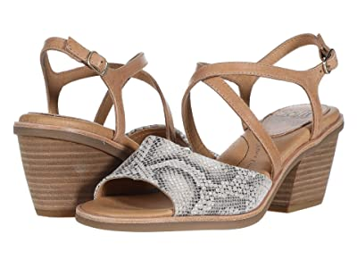 Sofft Piara (Nude/Rosewater Brooklyn Snake Print/Tequila) Women