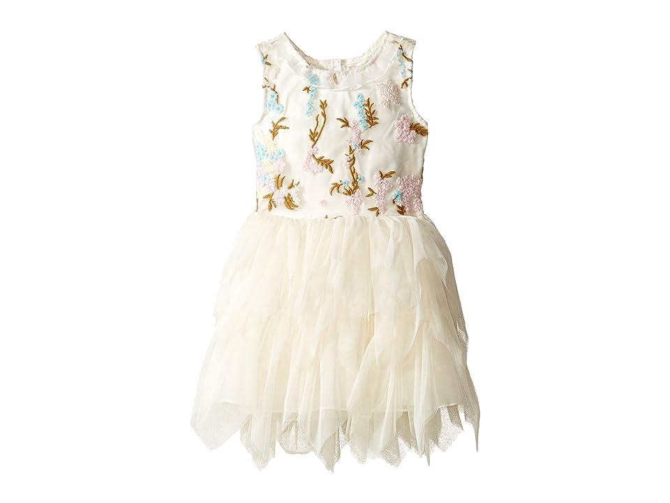 Nanette Lepore Kids Embroidered Bodice Ballerina Dress (Infant) (Off-White) Girl