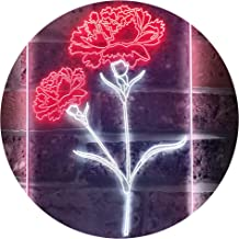 Carnation Flower Room Dual Color LED Neon Sign White & Red 210 x 300mm st6s23-i3526-wr