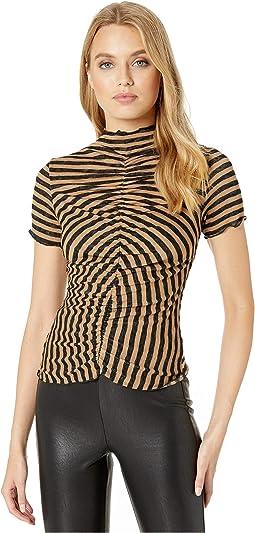 Black/Burro Stripe