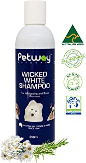 Petway Petcare Wicked White Whitening and Stain Removal Shampoo – Natural Whitening Shampoo for Puppy, Free of Phosphates ...