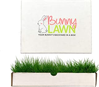 cheap rabbit hutches free delivery