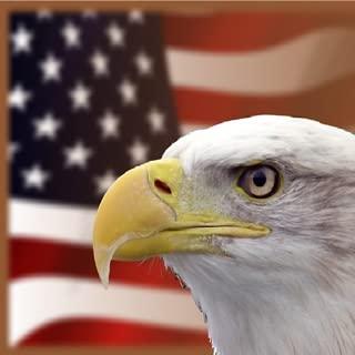 US Citizenship Naturalization Practice Test 2017 Flashcards