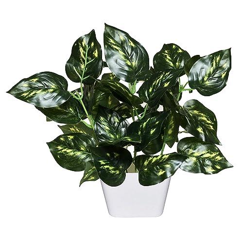 MIMOB Artificial Natural Money Plant Leaf Indoor/Outdoor Plant Decorative Plant with Pot (27 cm x 22 cm Green)