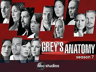 Grey's Anatomy (Yr 7 2010/2011)
