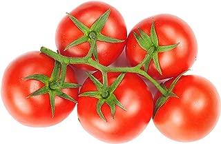 tomato bush champion ii