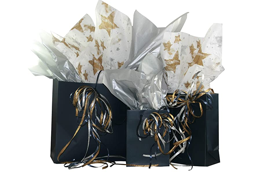 Eurotote Gift Bag Assortment with Coordinating Tissue Paper and Ribbon - 16 Pieces (Navy)