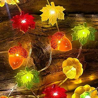 TURNMEON 3D Pumpkin Maples Acorns String Lights Fall Decor, 10Ft 30LED Warm White Lights Battery Powered Fall Lights Decor...