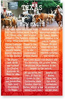 TEXAS FUN FACTS postcard set of 20 identical postcards. US state trivia post card pack. Made in USA.