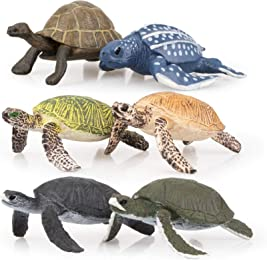 Best toy turtles for kids