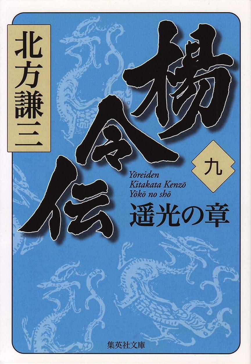 肉屋提案する違反楊令伝 九 遥光の章 (集英社文庫)