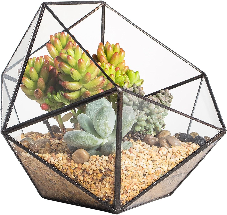 NCYP Moderno terrario poliédrico triangular de cristal, de fabricación artesanal, para plantas suculentas, bonsáis o cactus