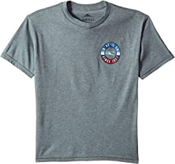 O'Neill Kids - Supply Short Sleeve Tee Screens Imprint (Big Kids)