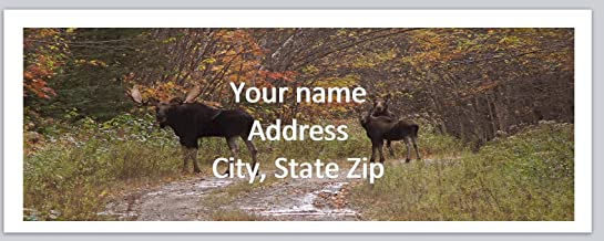 150 Personalized Address Labels Western Country Hunting Moose (ac 953)