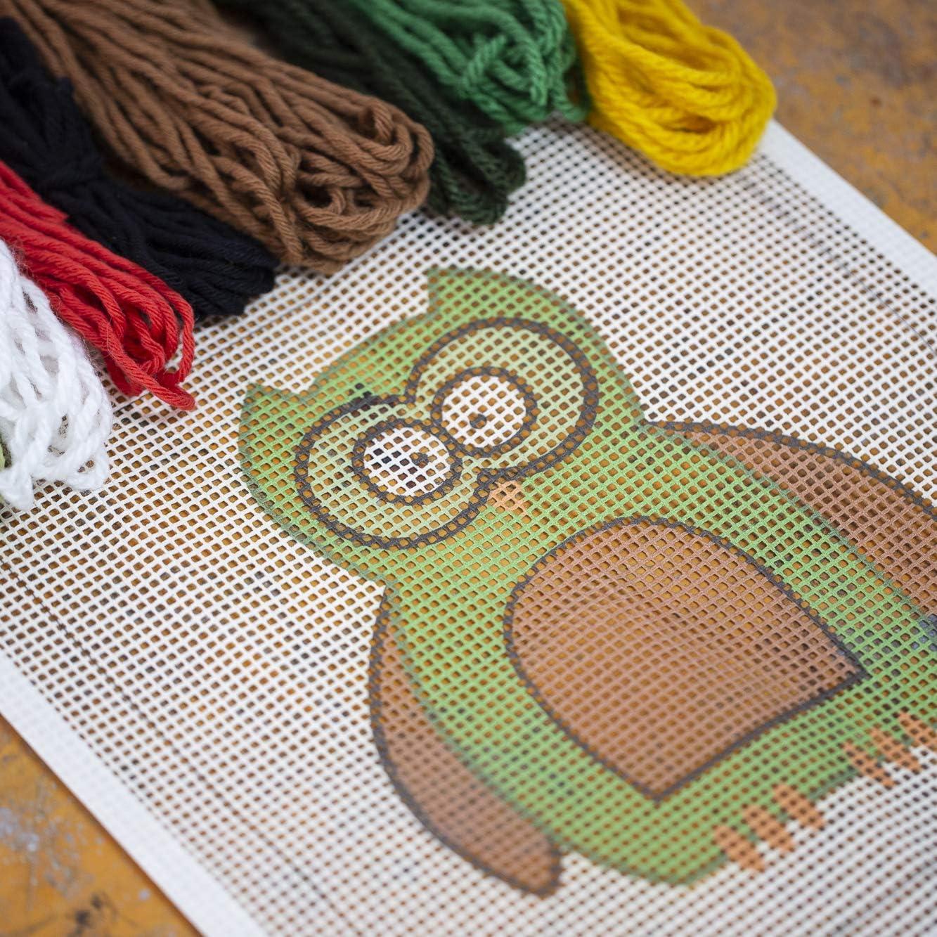 Buho Incluye lana y aguja de tapicer/ía Kit de bordado en punto de cruz o medio punto Ca/ñamazo impreso 30 cm x 30 cm Punto de Cruz para ni/ños de Delicatela