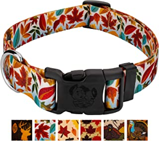Country Brook Design - Deluxe Dog Collar - Awesome Autumn Collection with 6 Designs You'll Fall for