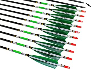 TTAD 31 inch Carbon Arrows Green Turkey Feather Targeting Arrows Archery with Screw-in Field Tips Hunting&Practice(12 Pack)