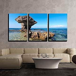 wall26 - 3 Piece Canvas Wall Art - Flower Vase Coral Rock with Blue Sky - Modern Home Decor Stretched and Framed Ready to Hang - 16