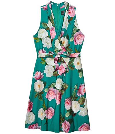 Adrianna Papell Peony Printed Bias Dress (Green Multi) Women