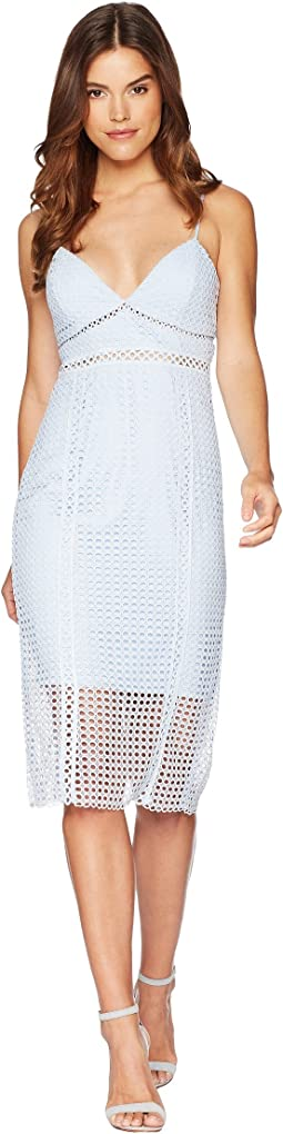 Bardot - Circle Lace Dress