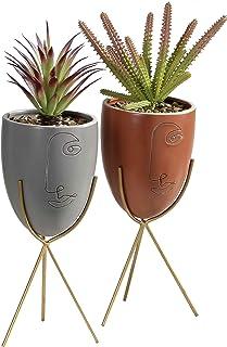 TERESA'S COLLECTIONS Decorative Fake Succulent Plants in Pot Artificial Plants Potted Faux Succulents Ceramic Head Face Pl...