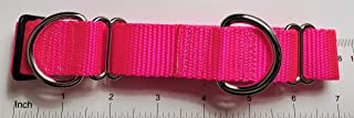 Pink Martingale Collar, 1 inch with tag ring