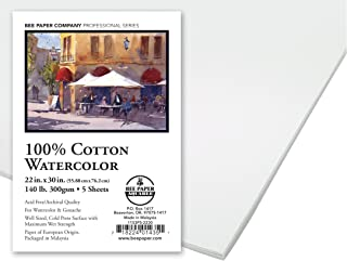 Bee Paper Company Bee 100% Rag 140# Cold Press Watercolor Paper, 22 30-Inch, 5 Sheets per Pack, inch x inch