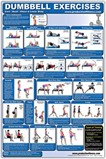 Laminated Dumbbell Exercise Poster/Chart - Lower Body/Core/Chest/Back - Created by Fitness Experts with University Degrees...