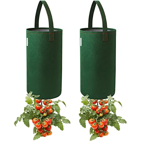 Pri Gardens Upside Down Tomato Planter, 2- Pack(Requires Plants,Soil and Fertilizer, not Included)