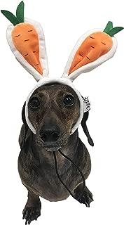 Midlee Carrot Bunny Ears Easter Dog Headband Costume