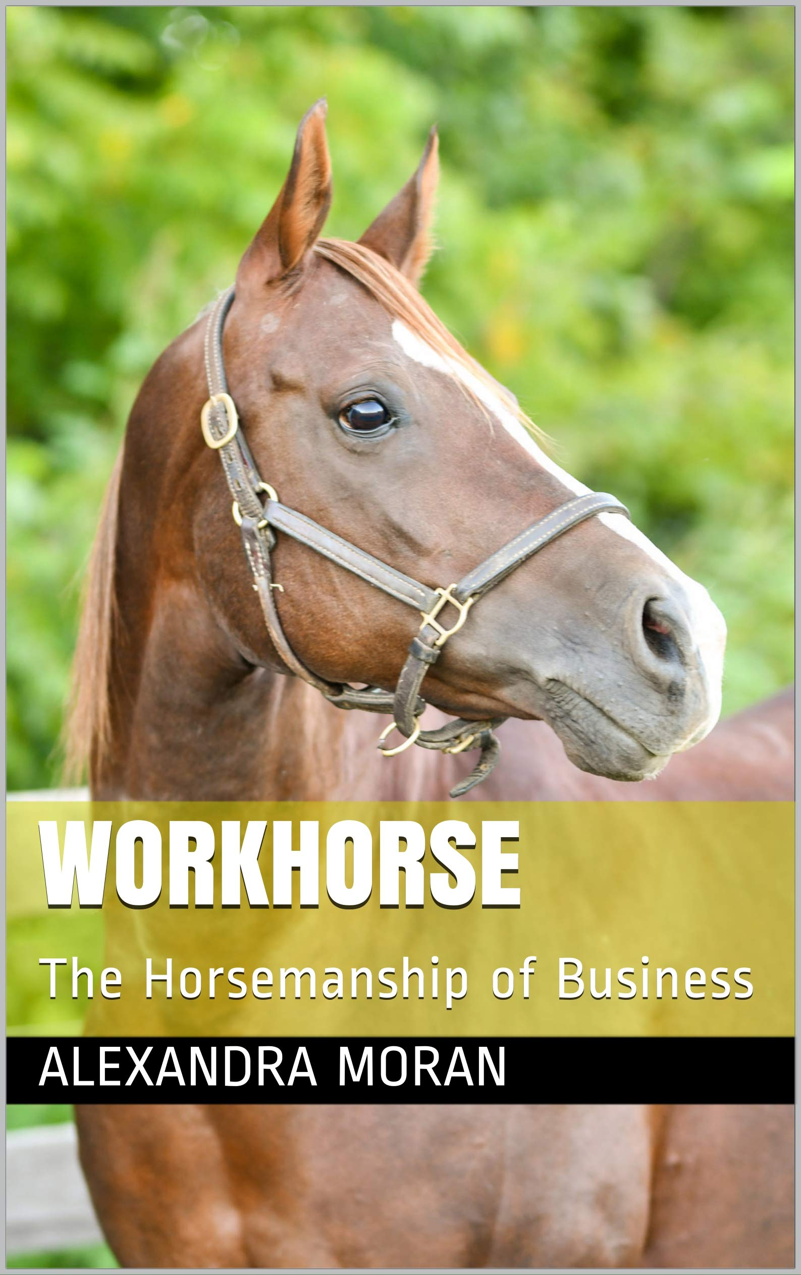 Workhorse: The Horsemanship of Business