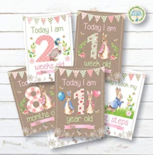 Personal Moments Peter Rabbit 1st Year Milestone Cards •