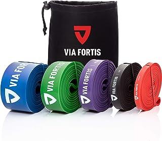 VIA FORTIS Bandas elasticas musculacion Gomas elasticas Fitness para su Entrenamiento en casa - con el Plan de Entrenamiento y la Bolsa - 5 Fuerzas Diferentes Disponibles