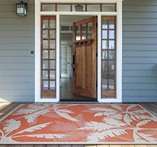 Best couristan area rugs Reviews