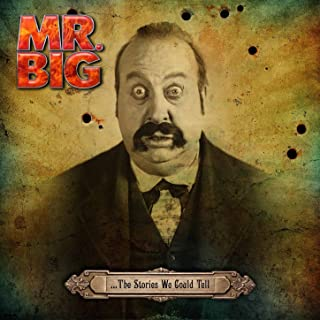 the man who has everything mr big