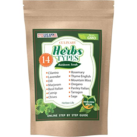 Basil Oregano Parsley Chives 14 Herb Seeds Variety Pack for Planting Outdoor and Indoor Grown in US Cilantro Dill and Others for Your Garden