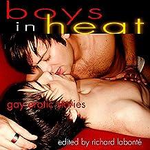 Boys in Heat: Gay Erotic Stories
