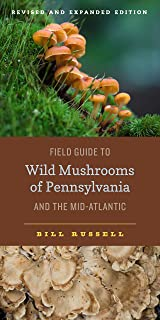 wild mushrooms in pa