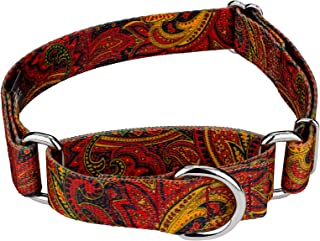 Country Brook Petz - Martingale Dog Collar - Five Paisley Collection
