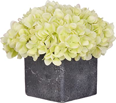 House of Silk Flowers Artificial Green Hydrangea in Small Stone Cube