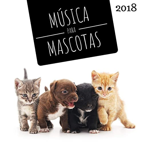 Perros y Gatos by Mascotas Amor Club on Amazon Music ...