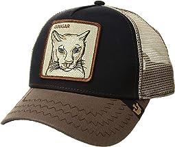 Navy Cougar