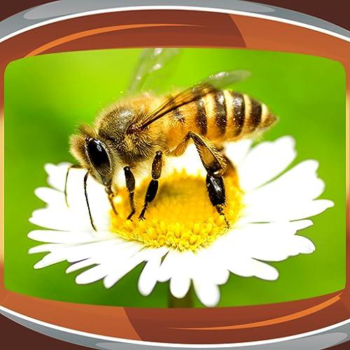 Biene Live Wallpapers